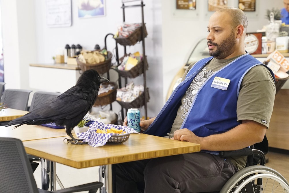 Superstore - Season 2 Episode 03: Guns, Pills and Birds