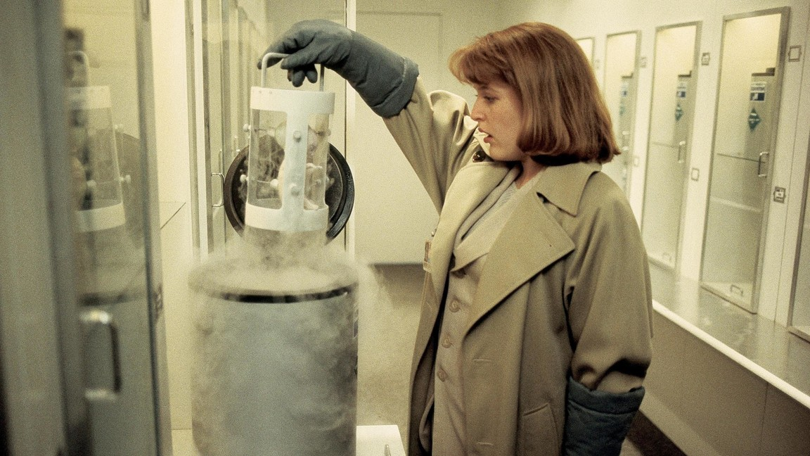 The X-Files - Season 1 Episode 24: The Erlenmeyer Flask