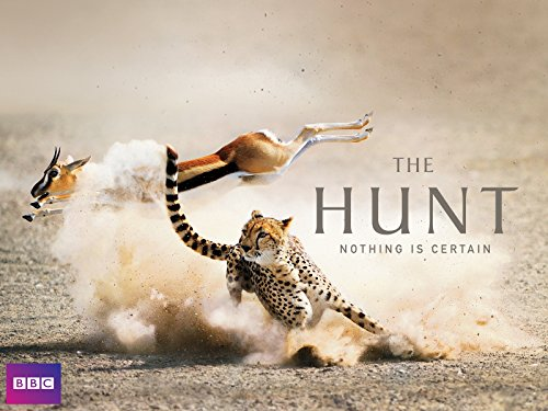 The Hunt - Season 1