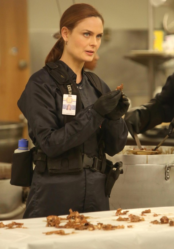 Bones - Season 9 Episode 10: The Mystery in the Meat