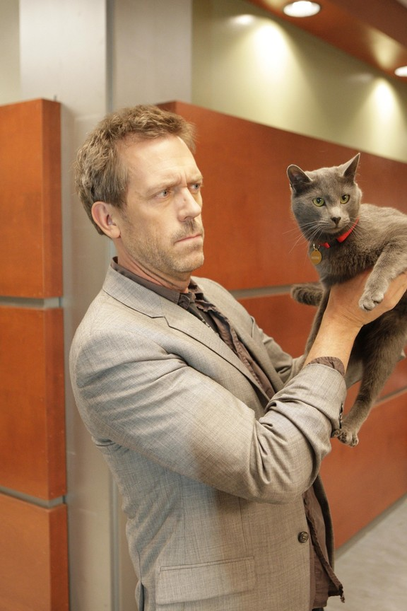 House M.D. - Season 5 Episode 18: Here Kitty