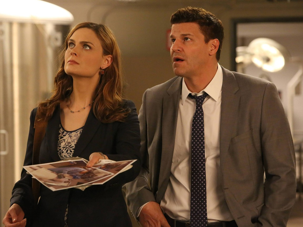 Bones - Season 9 Episode 21: The Cold in the Case