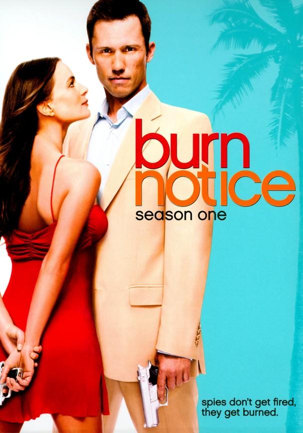 Burn Notice Stream Deutsch