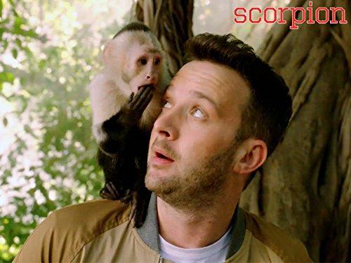 Scorpion - Season 3