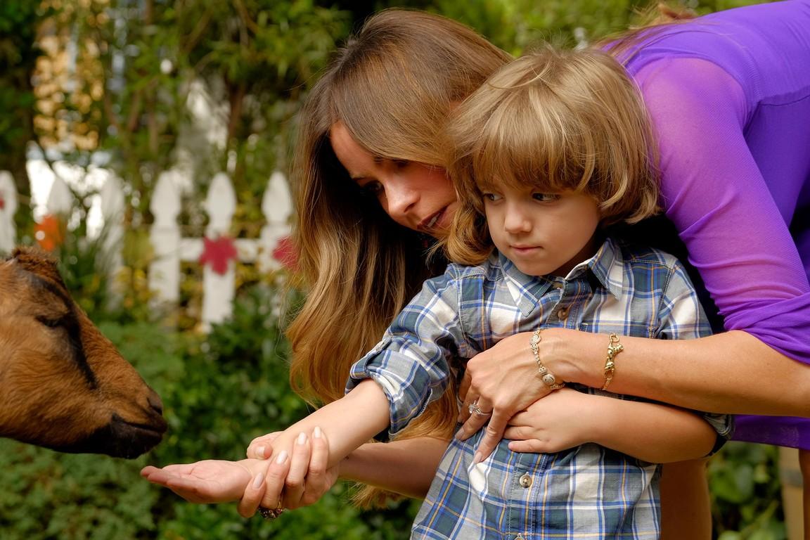 Modern Family - Season 8 Episode 07: Thanksgiving Jamboree