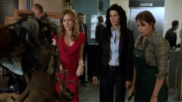 Rizzoli and Isles - Season 3 Episode 03: This Is How The Heart Breaks