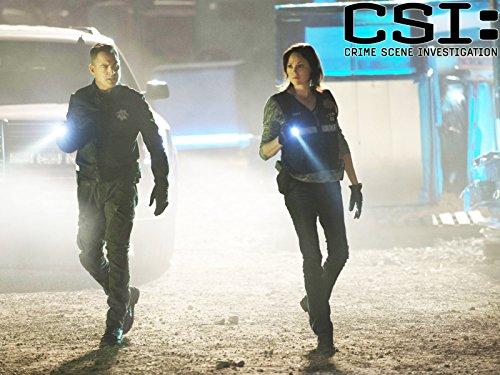 CSI - Season 16