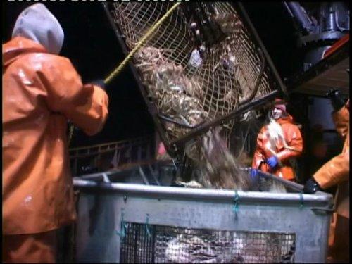 Deadliest Catch - Season 14