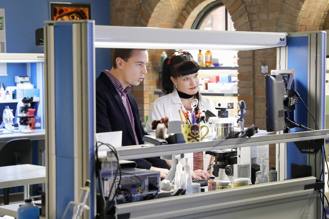 NCIS - Season 14 Episode 16: A Many Splendored Thing