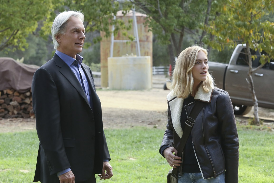 NCIS - Season 13 Episode 10: Blood Brothers
