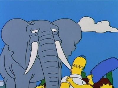 The Simpsons - Season 5