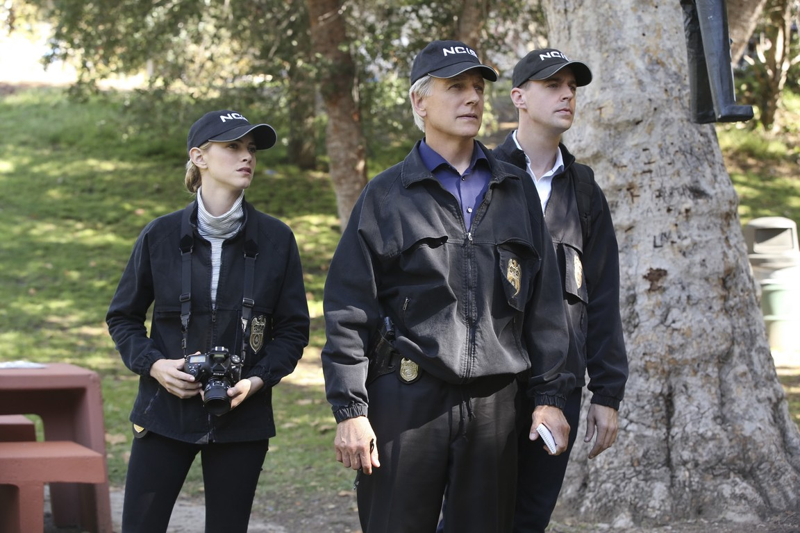 NCIS - Season 13 Episode 03: Incognito