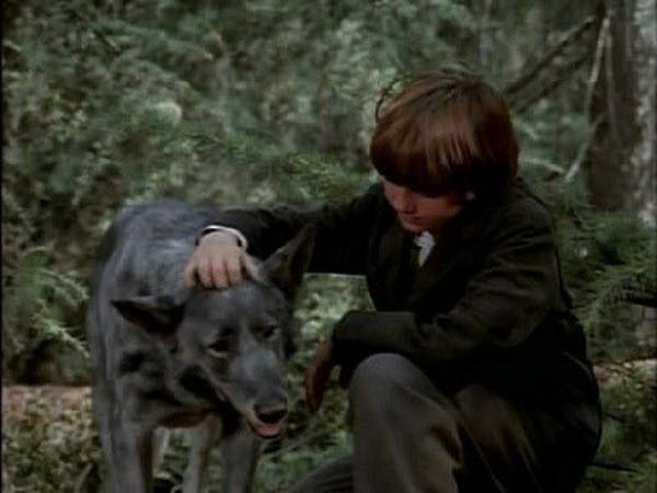 Little House on the Prairie - Season 8 Episode 12: No Beast So Fierce